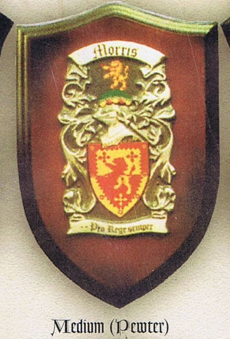 Coat of Arms Hand Painted Pewter Medium Single Plaque