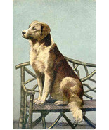 Awaiting His Master Signed Vintage Post Card. - $7.00