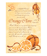 Fresh Scents Scented Sachets by Willowbrook Company - Orange Clove, 3 Pack