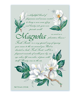 Fresh Scents Scented Sachets by Willowbrook Company - Magnolia, 3 Pack
