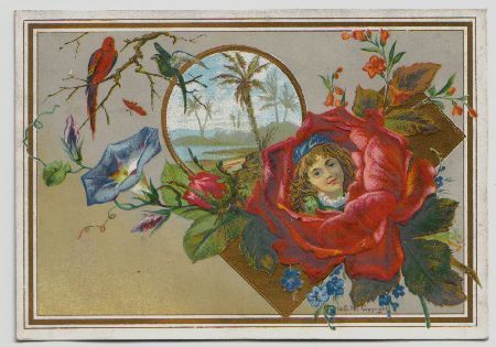 Vintage Antique Victorian Tradecard Illustrated Scarce