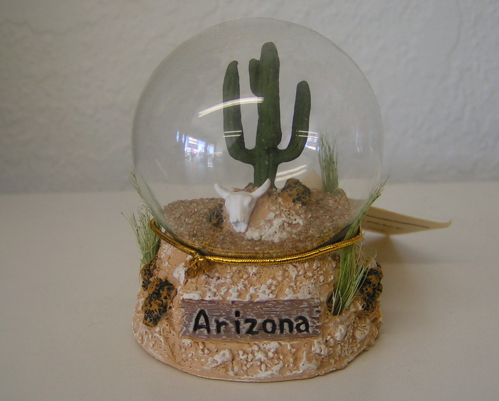 Cactus_snowglobe