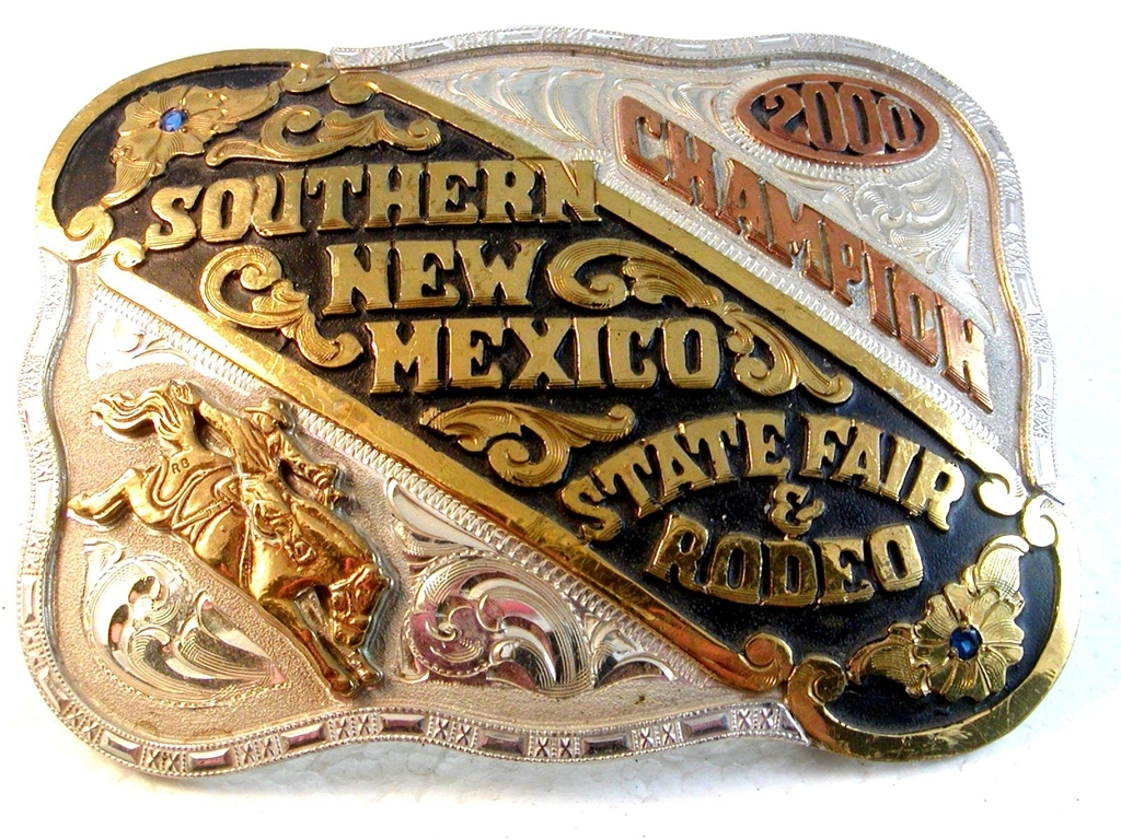 1994 Wild Thing Champion Bull Rider High GMC Sierra Rodeo Belt Buckle by Red Blu