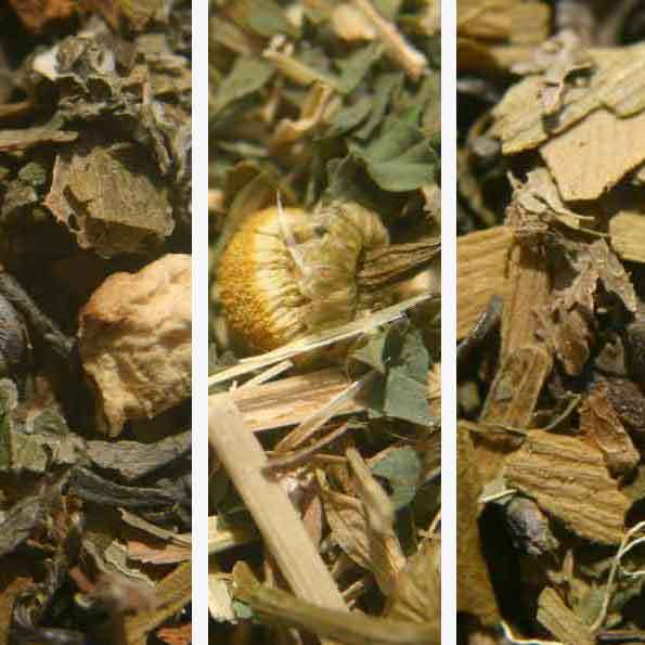 HERBAL Tea Sampler Pack Choose THREE 1 oz. each