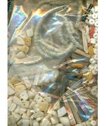 Sea Shell Beads Grab Bag 1 - $19.99