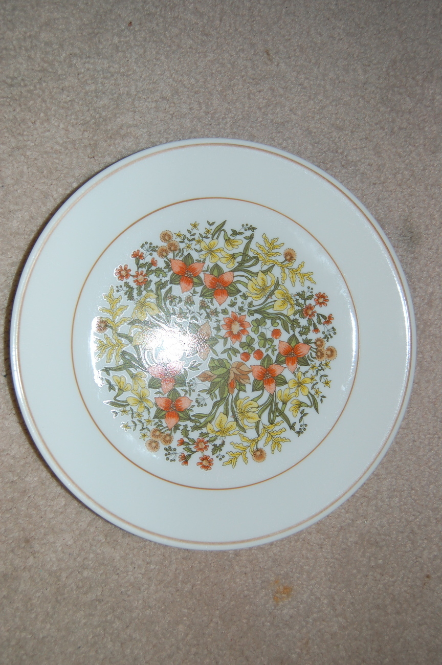 Corelle_indian_summer_dinner_plate