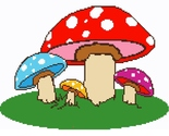 Colorful_mushrooms_thumb155_crop