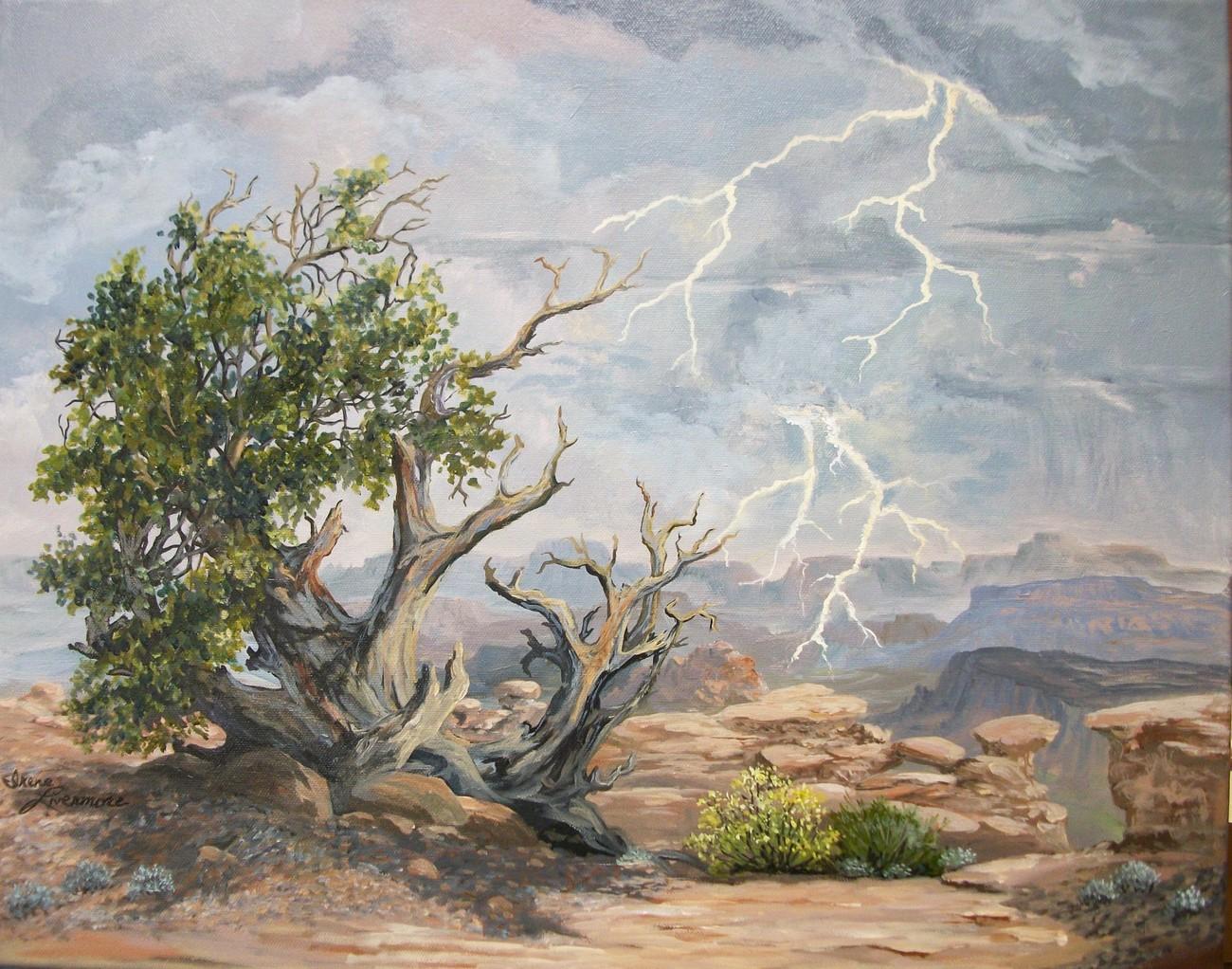 Utahs Vast Cedar Desert Canyons Landscape Original