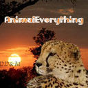 Animaleverything_avatar_thumb128