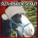 Suthrnhorsenut_horse_santa_avatar_thumb128