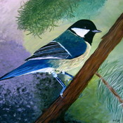 Blue_chicadee_painting_thumb175