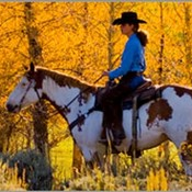 Fall_riding_-_copy_thumb175