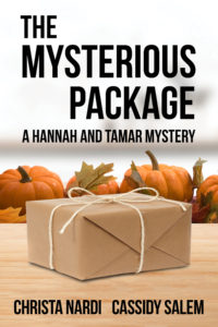FEATURED BOOK: The Mysterious Package by Christa Nardi