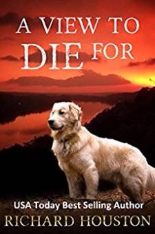 A View to Die For (Books to Die For, Book 1)