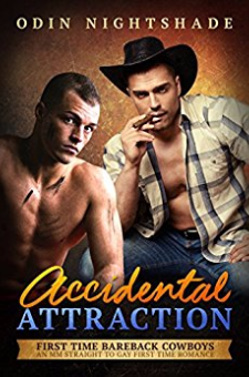 Accidental Attraction (Book 2)