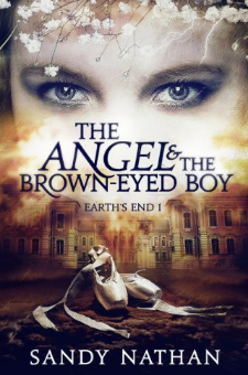 The Angel & the Brown-eyed Boy (Book 1)