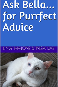 Ask Bella…for Purrfect Advice