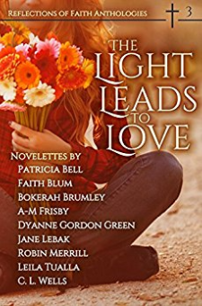 The Light Leads to Love (Book 3)