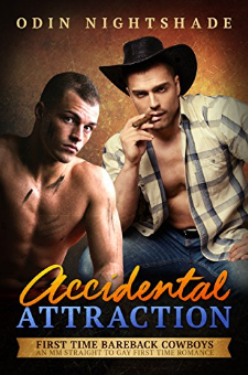 Accidental Attraction