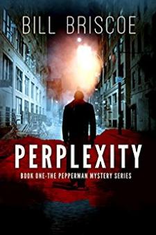 Perplexity