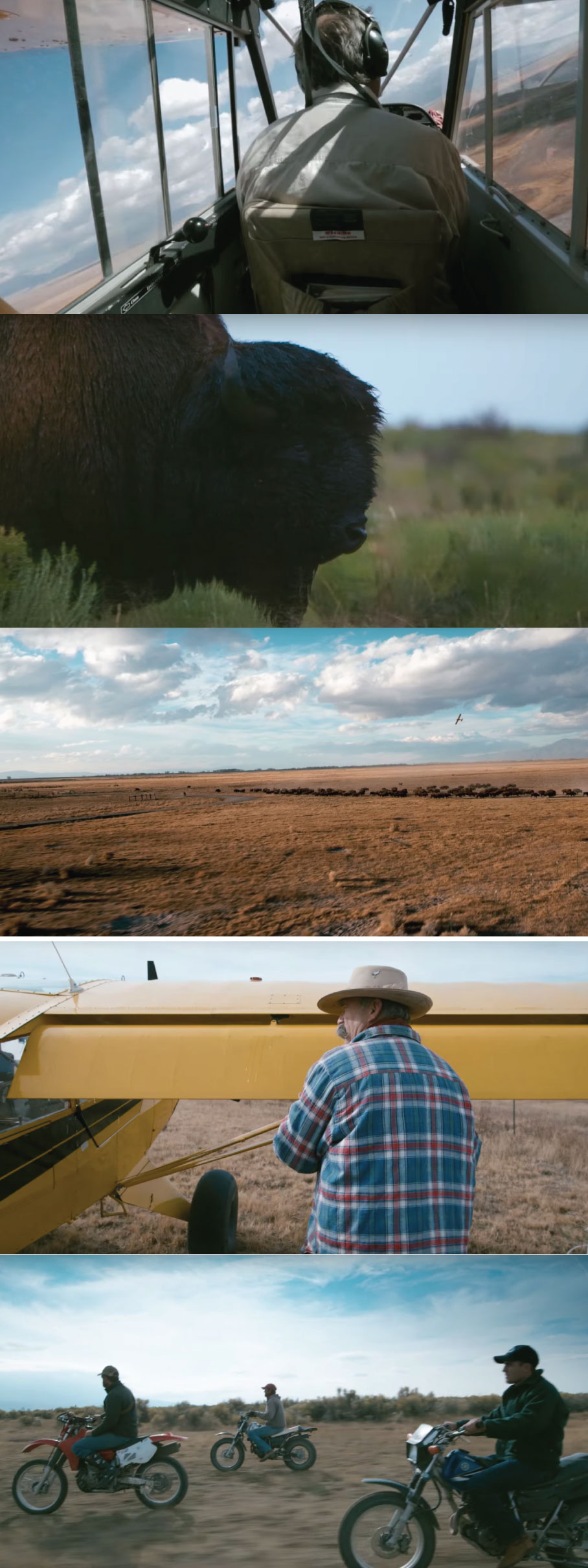 Ranchlands episode 5 thumbnails