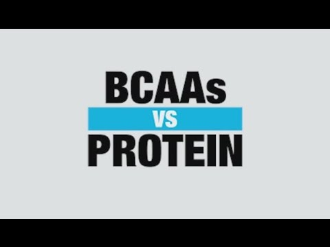 BCAA vs. Protein: Which Supplement Is Better for Muscle Building?