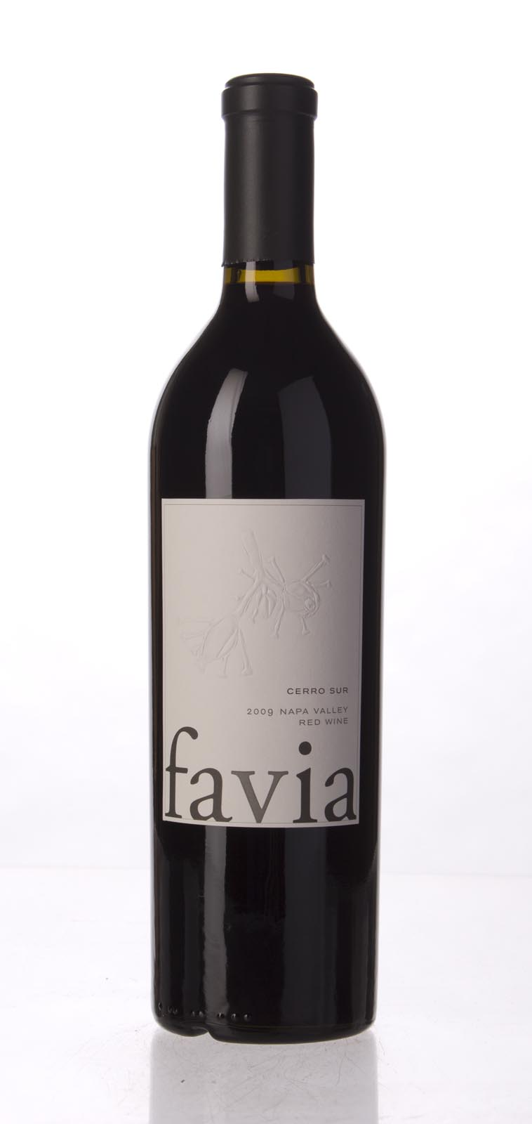 Favia Proprietary Red Cerro Sur 2009, 750mL (WA94, ST92+) from The BPW - Merchants of rare and fine wines.