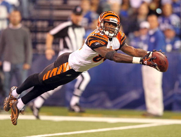 INDIANAPOLIS - NOVEMBER 14:  Chad Ochocinco #85 of the Cincinnati Bengals reaches for a pass during the Bengals 23-17 loss to the Indianapolis Colts in the NFL game at Lucas Oil Stadium on November 14, 2010 in Indianapolis, Indiana.  (Photo by Andy Lyons/Getty Images)