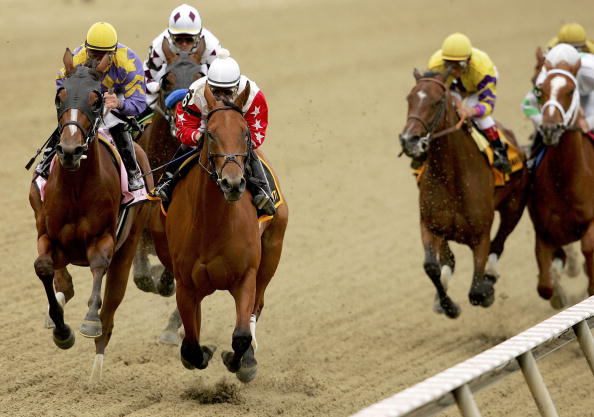BALTIMORE - MAY 19:  Saratoga Drive #8, ridden by Javier Castellano and Smart N Pretty #6, ridden by Richard Migliore lead the pack down the front stretch of the Black-Eyed Susan during the Pimlico Special at Pimlico Race Course May 19, 2006 in Baltimore, Maryland.  (Photo by Matthew Stockman/Getty Images)