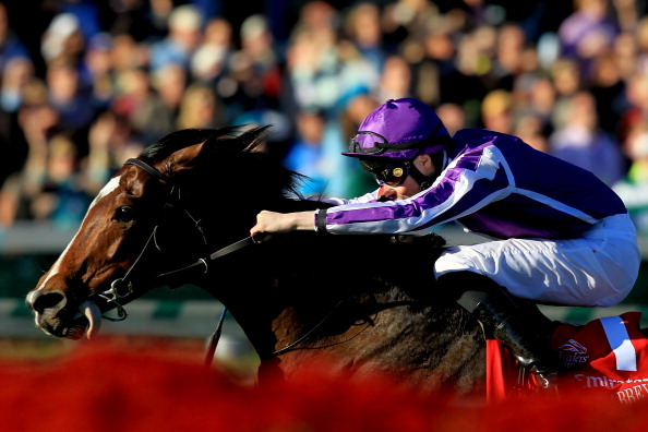 LOUISVILLE, KY - NOVEMBER 05: St Nicholas Abbey, riden by Joseph O'Brien, surges to the finish line to win the Breeders' Cup Turf during the 2011 Breeders' Cup World Championships at Churchill Downs on November 5, 2011 in Louisville, Kentucky.  (Photo by Matthew Stockman/Getty Images)