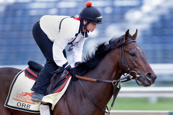 BALTIMORE, MD - MAY 16: Kentucky Derby winner Orb with exercise rider Jennifer Patterson up goes over the track in preparation for the 138th Preakness Stakes at Pimlico Race Course on May 16, 2013 in Baltimore, Maryland.  (Photo by Rob Carr/Getty Images)