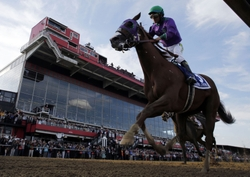 May 17, 2014; Baltimore, MD, USA; Victor Espinoza aboard California Chrome crosses the finish line to the 139th Preakness Stakesat Pimlico Race Course. Mandatory Credit: Winslow Townson-USA TODAY Sports