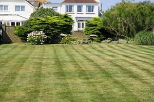 Grass 220465 640