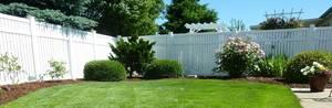 Back yard 250890 1920 banner