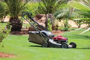Lawn mower 320799 1280