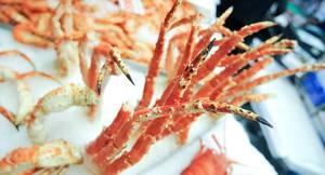 Crabs 601574 1280