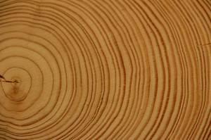 Wood 178223 1280