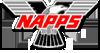 100 logo 100