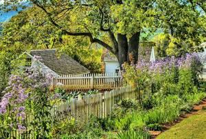 Garden 191782 1920