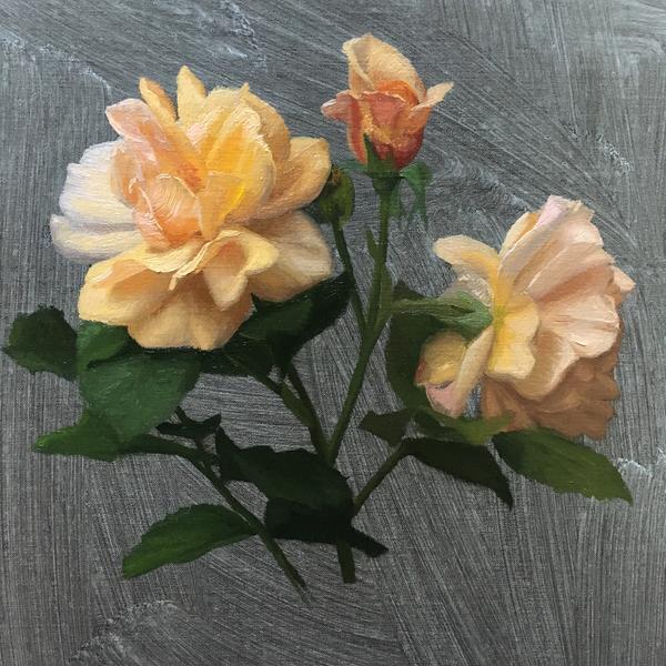 Garden Roses Study