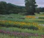 Sol Flower Farm