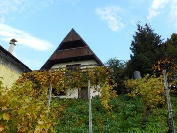 Gornja Dubrava, Veliki vrh, vikendica, 3 -etaže, vinograd