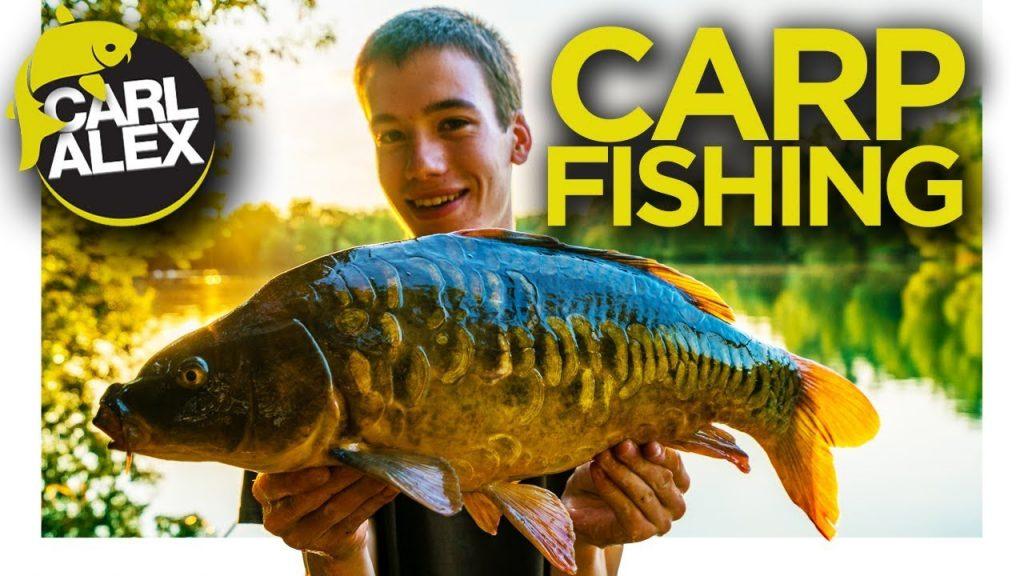 I caught a carp UP a TREE – CARP FISHING