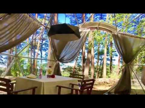 Glamping | Camping –  Beautiful place, silence, forest and nature by MGLOBE!