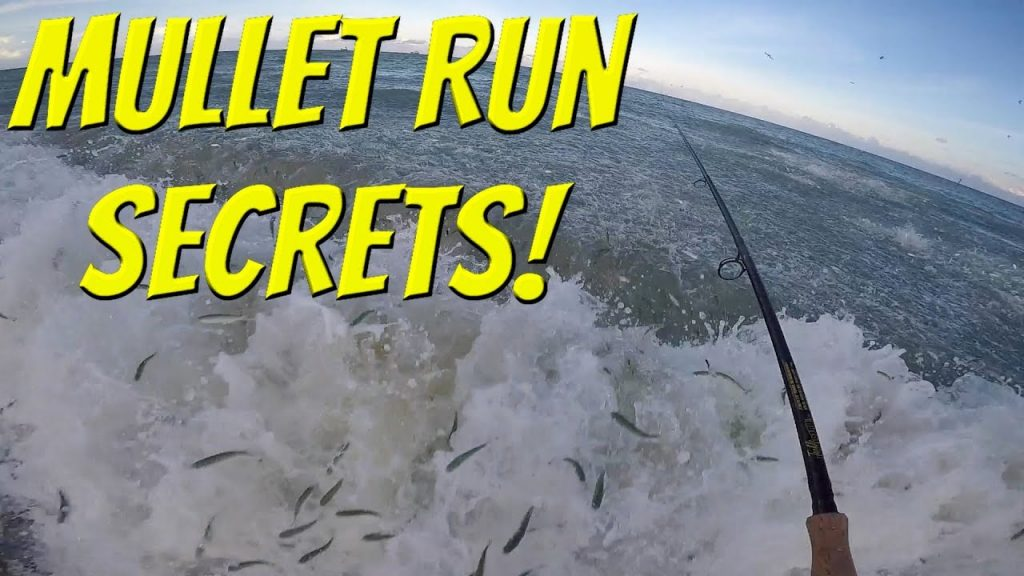 The SECRETS! To Fishing the Florida Mullet Run! (Tackle Tuesday)