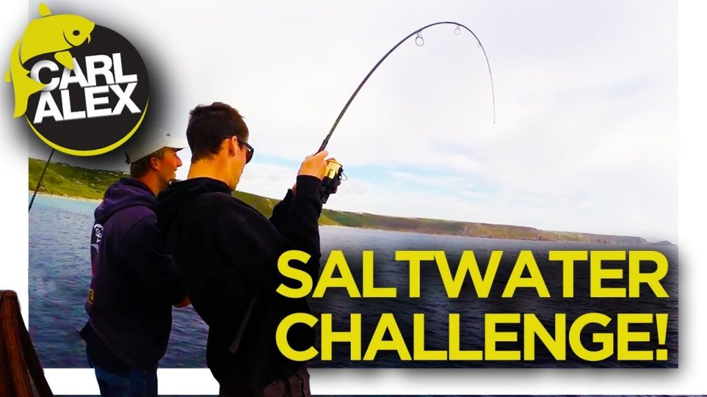 20 SPECIES IN ONE DAY??!! Fishing challenge saltwater