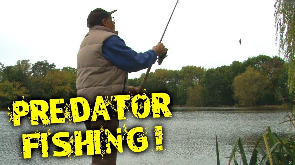 Predator Fishing ft. THE BAT?!
