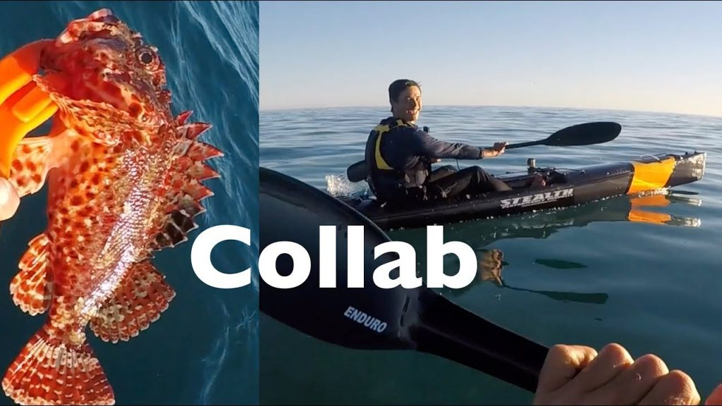 Catch n Cook VENOMOUS Scorpion fish Collaboration with RoKKit Kit Kayak Fishing Gold Coast EP.371
