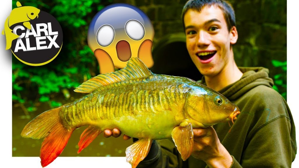 Micro Fishing – BIG SURPRISE!