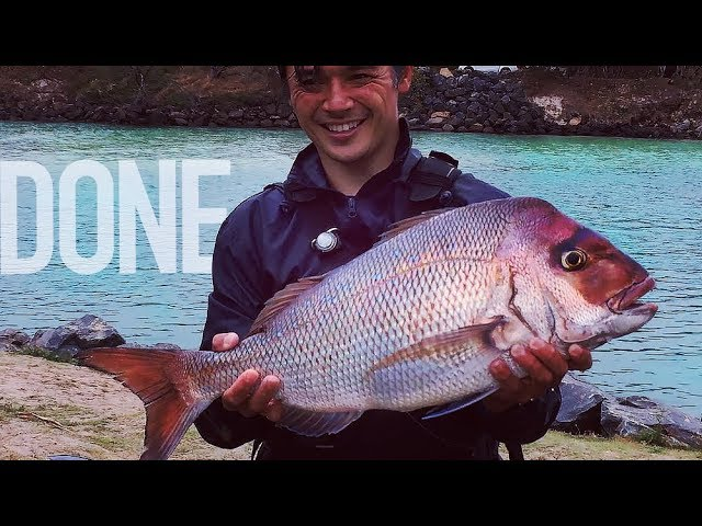 Last Snapper for a while – Fishing Switch Over time